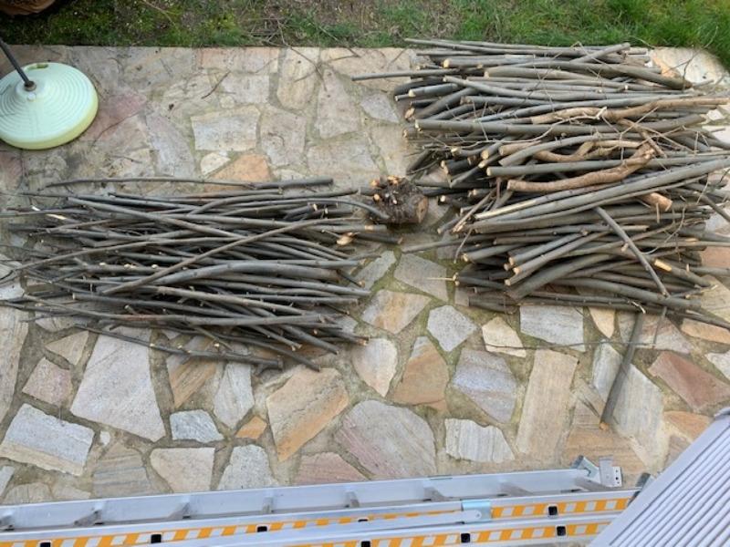 Recyclage, Récupe & Don d'objet : bois d'élagage platane