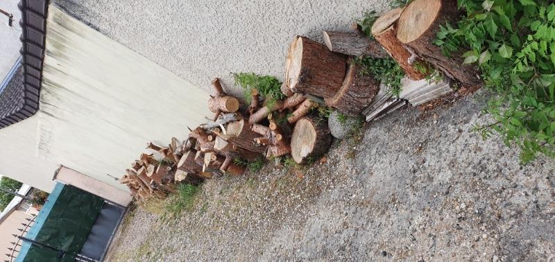 Recyclage, Récupe & Don d'objet : balancelle métal jardin