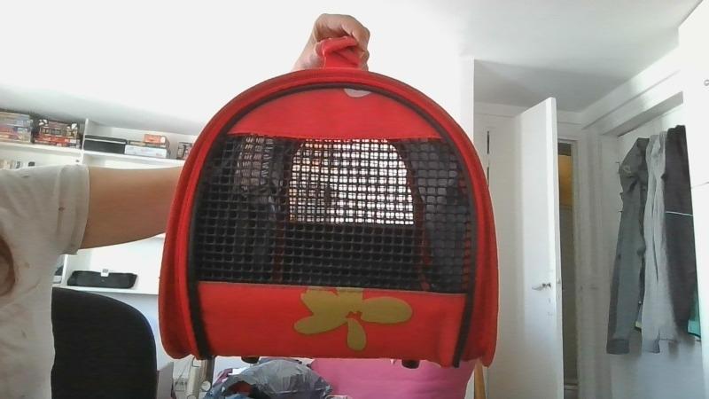 Recyclage, Récupe & Don d'objet : sac pour transporter chaton