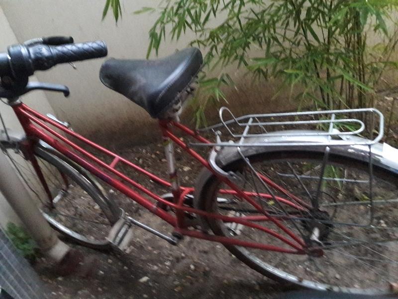 Vélo - Sport