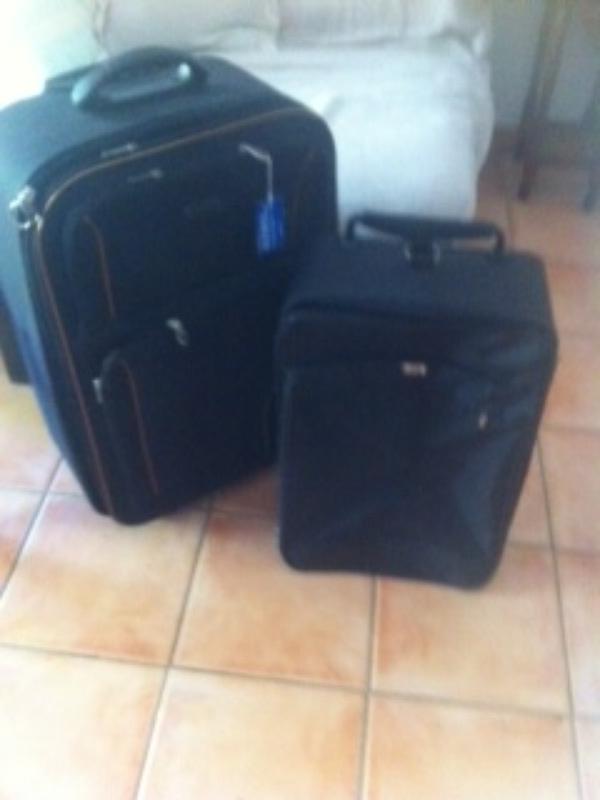Recyclage, Récupe & Don d'objet : valise cabine delsey. bagage de soute zifel.