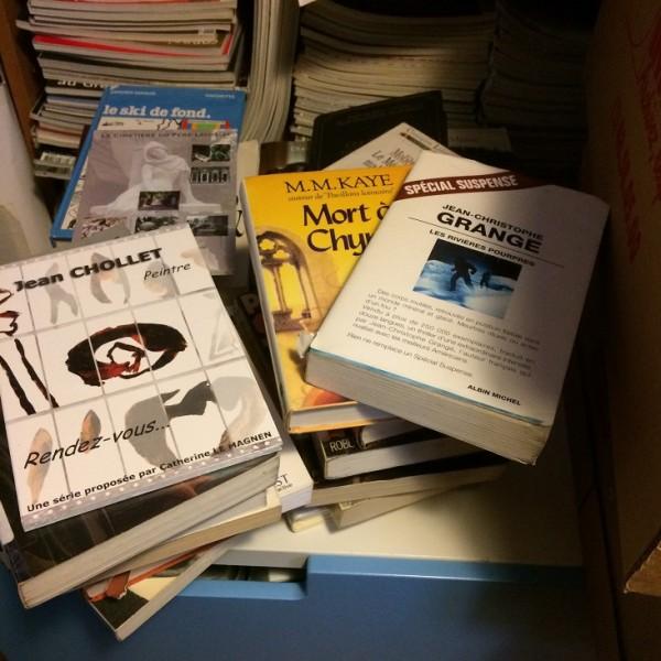 Recyclage, Récupe & Don d'objet : gros lot de livres guides et romans français