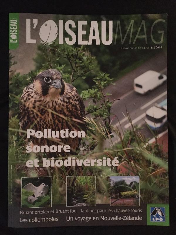 Recyclage, Récupe & Don d'objet : 2 magazines sur les oiseaux