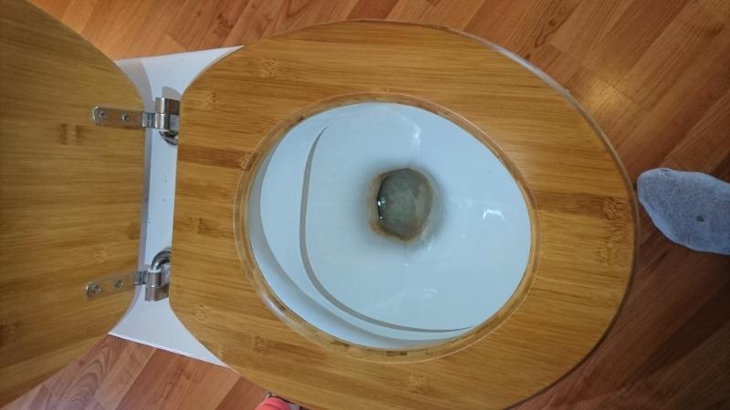 Recyclage, Récupe & Don d'objet : Toilettes: cuvette, réservoir, abattant