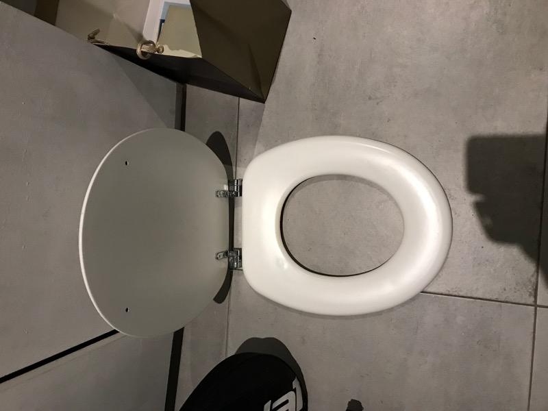 Recyclage, Récupe & Don d'objet : Couvercle WC